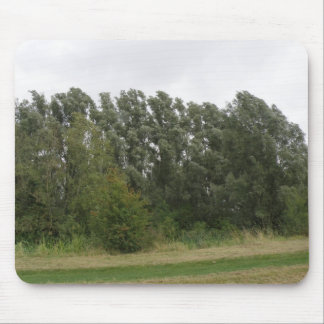 Line of Leaning Trees Landscape Mousepad