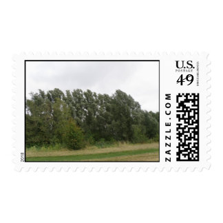 Line of Leaning Trees Landscape Postage Stamps
