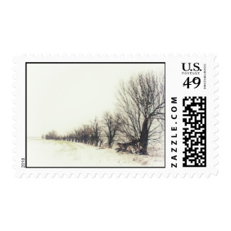 Line of Trees in the Snow Postage