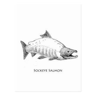 Línea arte de los salmones de Sockeye Postal