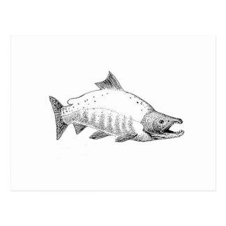 Línea arte de los salmones de Sockeye Tarjetas Postales