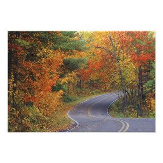 Línea de árboles del otoño camino en parque de est fotografia