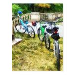 Línea de bicicletas en parque tarjetas postales