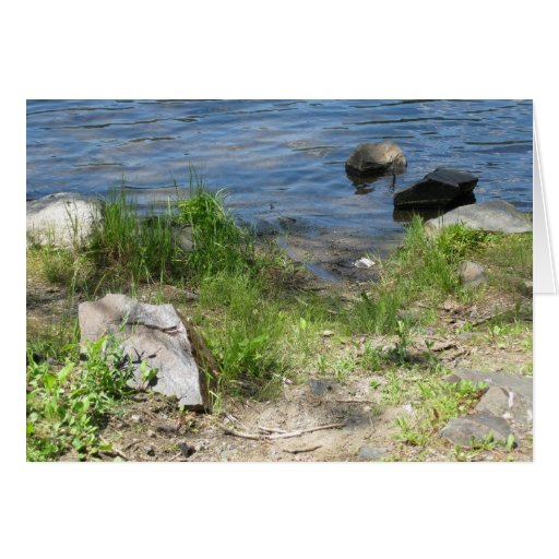 Línea de la playa de Adirondack Felicitaciones