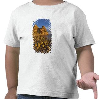 Línea de la playa rocosa en Isla Carmen en el Camisetas