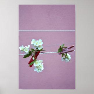 Línea de la primavera posters