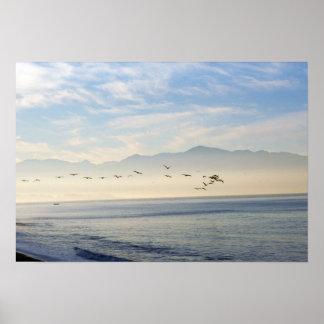 Línea de pelícanos que vuelan en la bahía México Póster