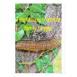 Línea del hongo de la familia postales