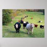 Línea impresión del ganado impresiones