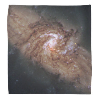 Lined-Up Galaxies Show Rare Details (NGC 3314) Bandana