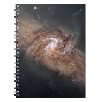 Lined-Up Galaxies Show Rare Details (NGC 3314) Notebook
