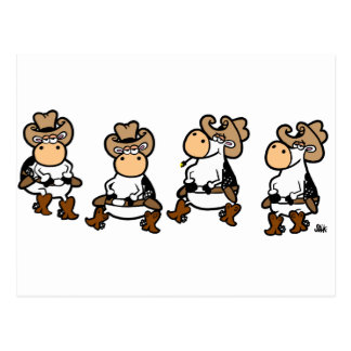 Linedancing Cows Postcard