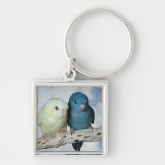 Lineolated parakeet pair keychain