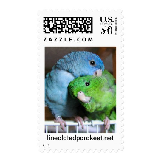 Lineolated Parakeets Postage