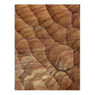 Lines carved in pale brown wood postcard