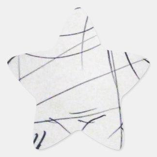 Lines of a Samurai Star Sticker