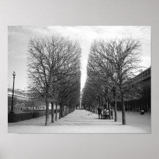 Lines of Paris Poster