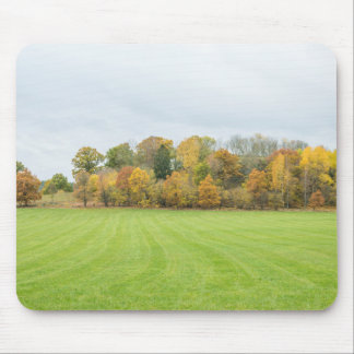 Lines Tree Mouse Pad