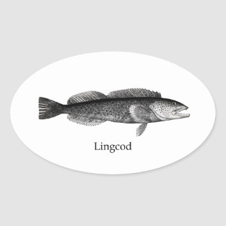 Lingcod (blanco y negro) pegatina ovalada