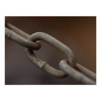 Link in the Chain Photo