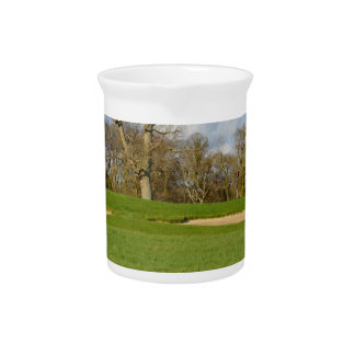 Links Golf Course Pitchers