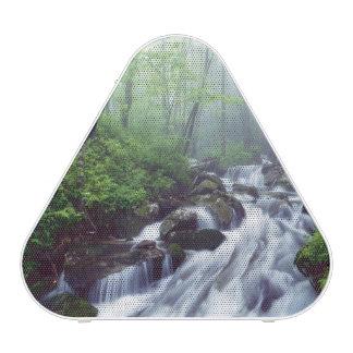 Linn Cove Creek cascading through foggy Bluetooth Speaker