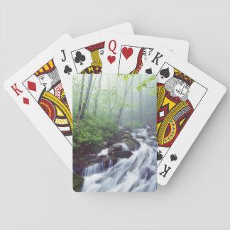 Linn Cove Creek cascading through foggy Poker Cards