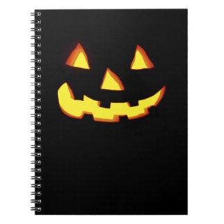 linterna enojada del enchufe o cuadernos