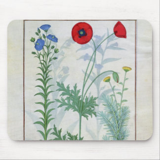 Linum, Garden poppies and Abrotanum Mouse Pad