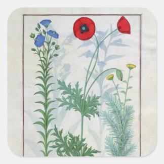 Linum, Garden poppies and Abrotanum Square Sticker