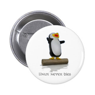 linux pin
