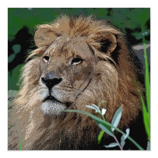Lion20150805 Magnetic Card