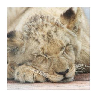 Lion_2014_1201 Impresiones En Lona