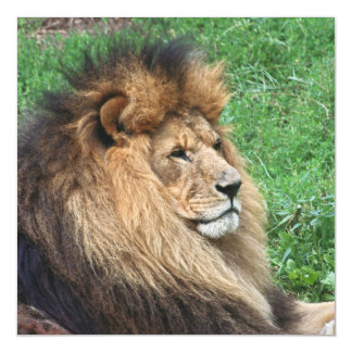 Lion_2015_0701 Magnetic Card