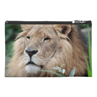 Lion_2015_0801 Travel Accessories Bags