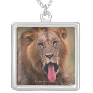 Lion 2 silver plated necklace
