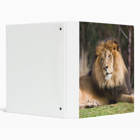 Lion 3 Ring Binder