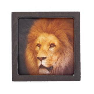 lion-6175 jewelry box