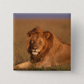 Lion 8 button