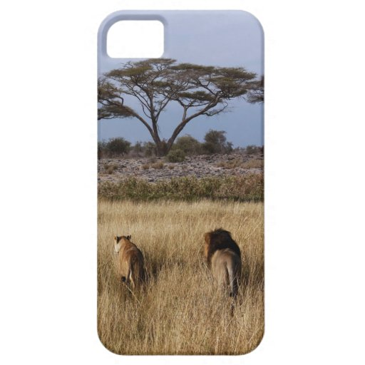 lion africa iphone4 case iPhone 5 cover