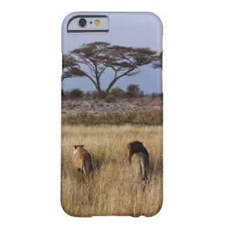 lion africa iPhone 6 case
