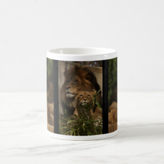 Lion and cub in the grass coffee mug