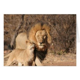 Lion and Lion Cub Card