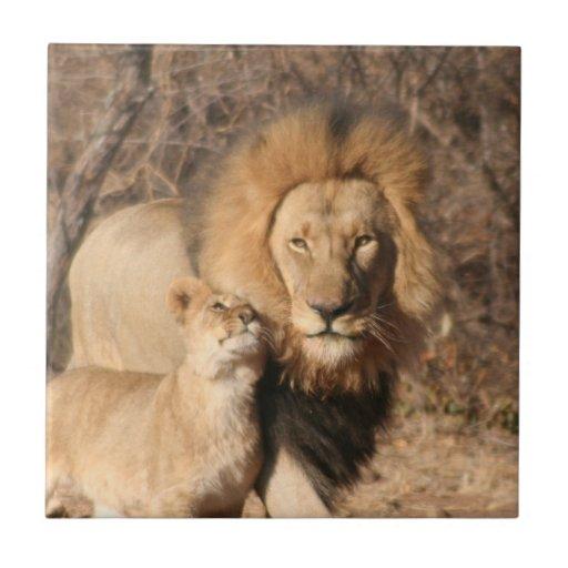Lion and Lion Cub Tile