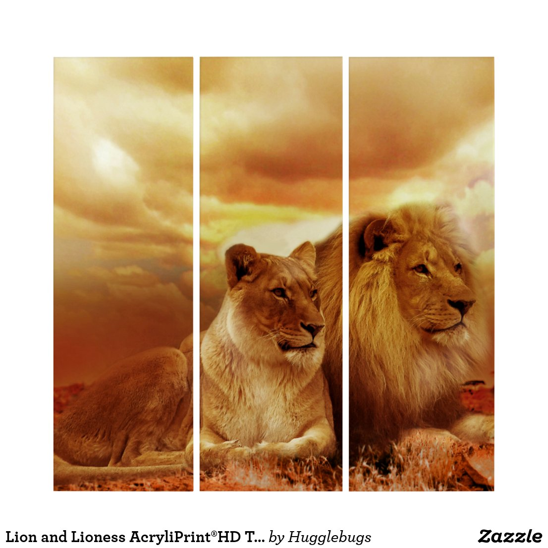 Lion and Lioness AcryliPrint®HD Triptych Wall Art