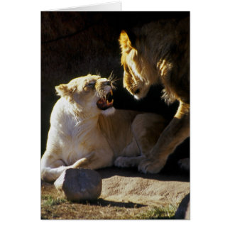Lion and lioness growl card