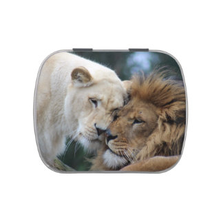 Lion and Lioness Jelly Belly Candy Tin