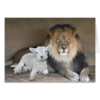 Lion and the lamb card