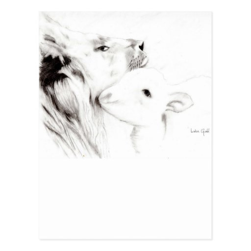Lion and the Lamb Postcards