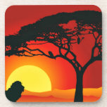 Lion and the Sunset Beverage Coaster